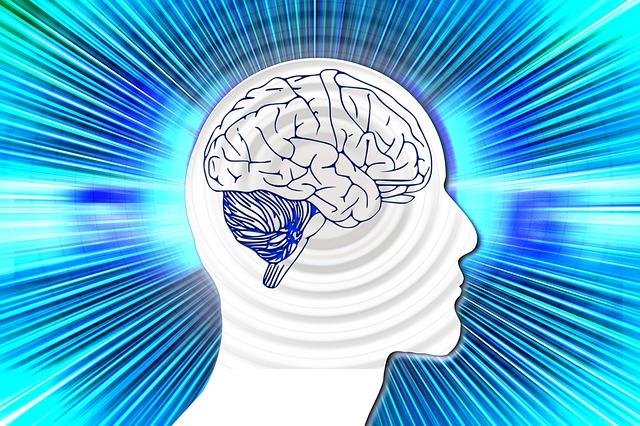 illustratie van contouren hoofd met hersenen erin
