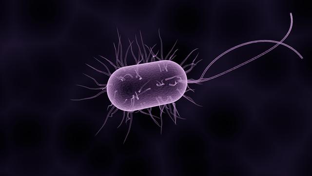 illustratie van een bacterie bij column over superbugs